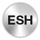 Srebrna ikona ESNT