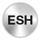 Icone ESH sur cercle argenté